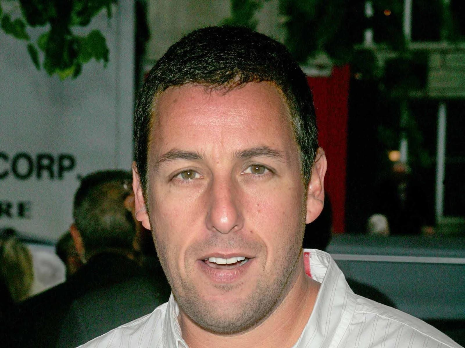 Adam Sandler HD Desktop Wallpapers actors wallpaper