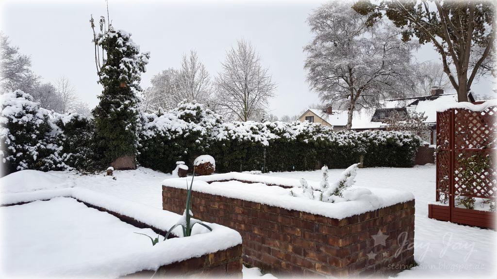 sternensinn garten und mehr eine winterwoche im november. Black Bedroom Furniture Sets. Home Design Ideas
