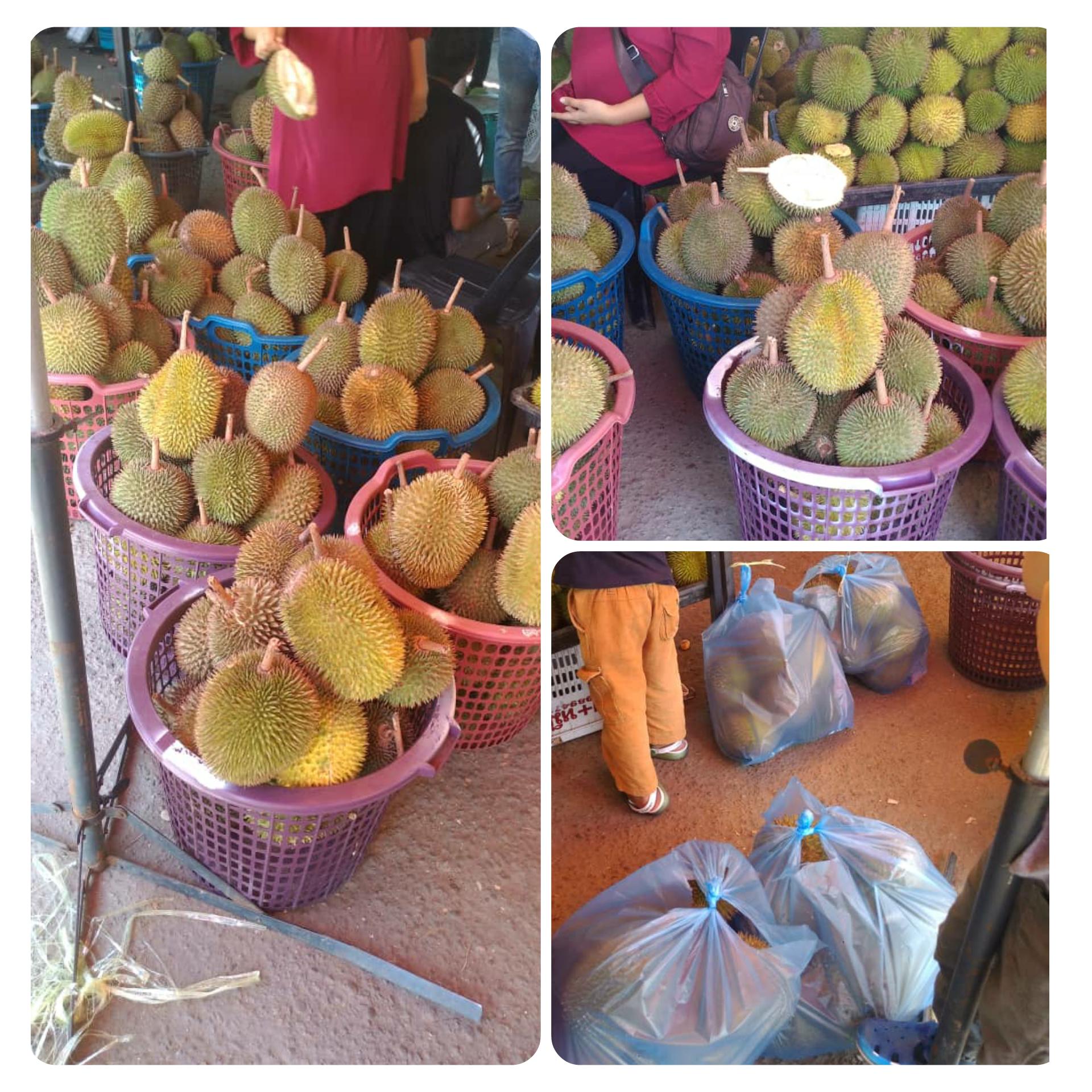 Borong Durian Di Sipitang