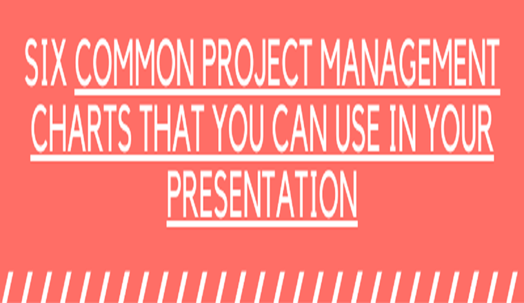 9 Common Project Management Charts That You Can Use in Your Presentation #infographic
