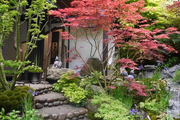 Japan Garden Flowers: Japanese Zen Garden