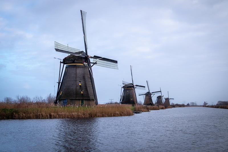 Tự làm hồ sơ du học Hà Lan