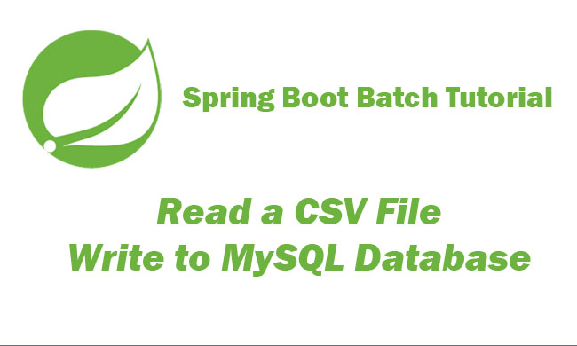 Read a CSV File and write to MySQL Database with Spring Boot Batch