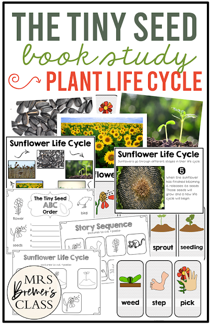 The Tiny Seed book study sunflower life cycle companion activities unit for Kindergarten and First Grade