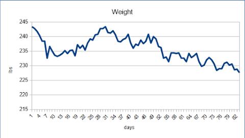 12 week weight loss report