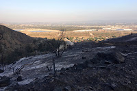 View southeast toward the San Gabriel River from Van Tassel Fire Road surrounded by damage from the Fish Fire, Azusa, June 30, 2016