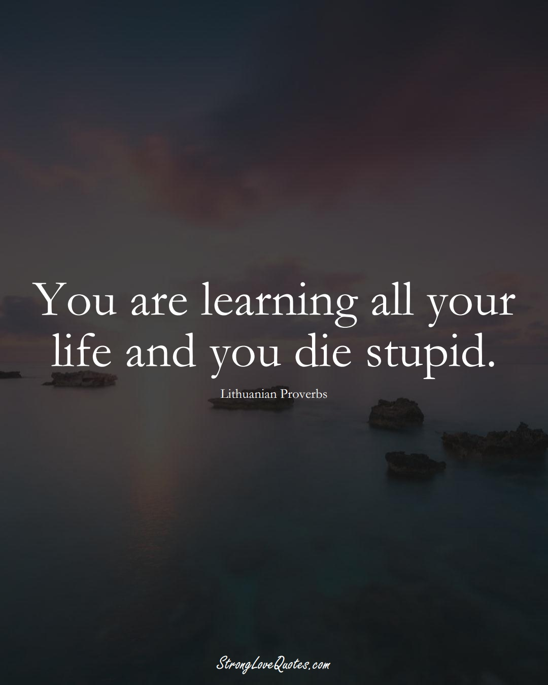 You are learning all your life and you die stupid. (Lithuanian Sayings);  #AsianSayings