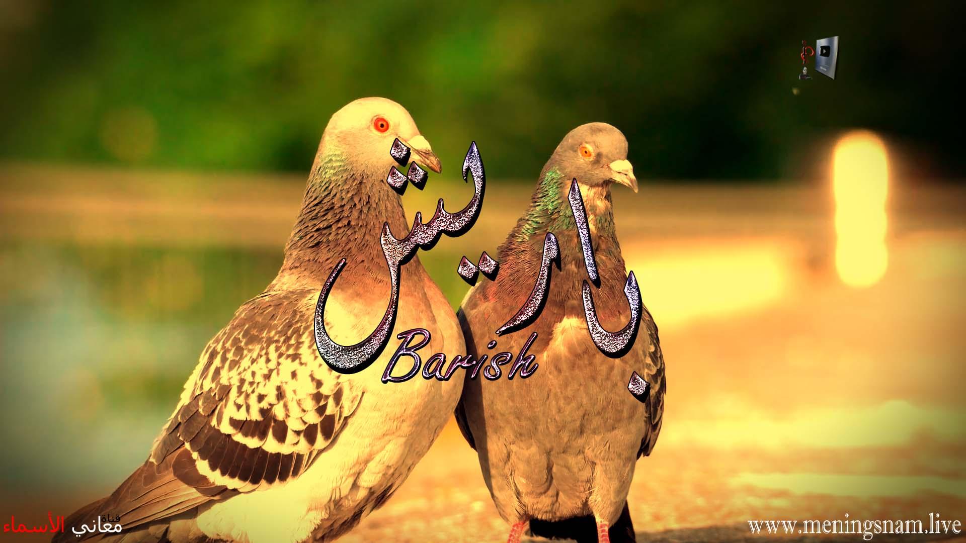 معنى اسم باريش وصفات حامل هذا الاسم Baris