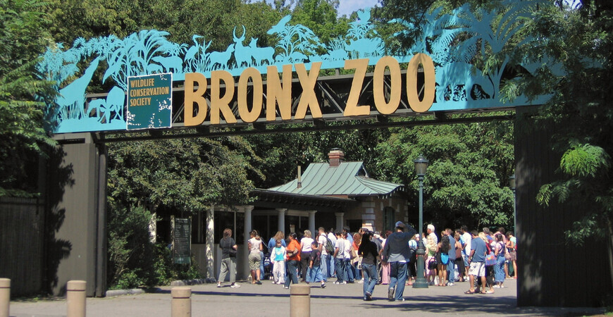 Bronx Zoo, New York City