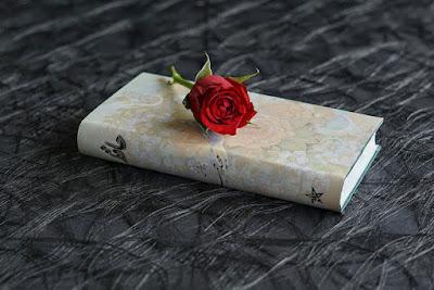 Kumpulan Puisi Cinta Karya Mas Donda