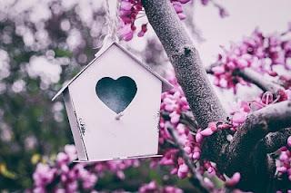 ハート形の巣箱