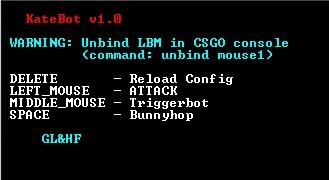 CSGO TRIGGERBOT BUNNYHOP V.0.6