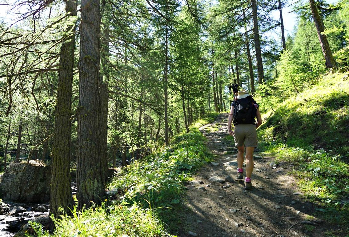 Trail near Valpréveyre to Col d'Urine