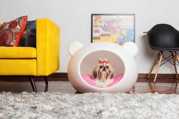 Cute Beds For Pets Combine With Interior Decoration Ideas 12