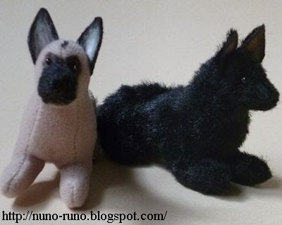 Belgian shepherd dogs