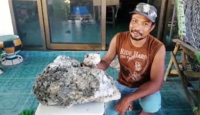 Penemuan muntahan paus 18 kilogram
