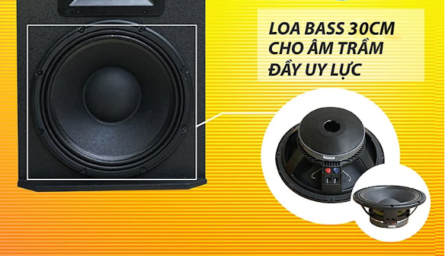 Loa karaoke HAS FS112