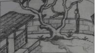 Karang Kagantung