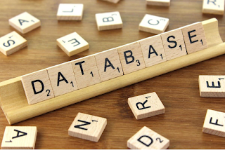What is Database? Beginner Guide Database