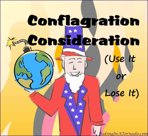 Conflagration Consideration, Use It or Lose It | Graphic designed by, featured on, and property of www.BakingInATornado.com | #MyGraphics