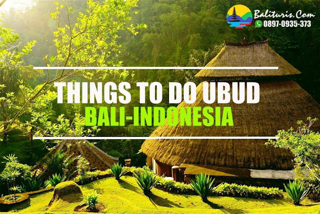 things to do ubud Indonesia, BALI TOUR UBUD, TOUR BALI DRIVER