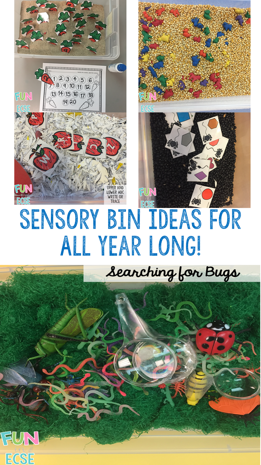 Sensory Bins Ideas For All Year Long!