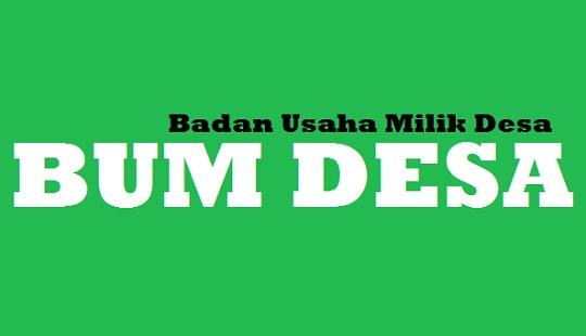 Badan Usaha Milik Desa