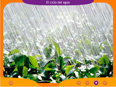 http://www.ceiploreto.es/sugerencias/juegos_educativos_5/7/1_El_ciclo_del_agua_I/index.html