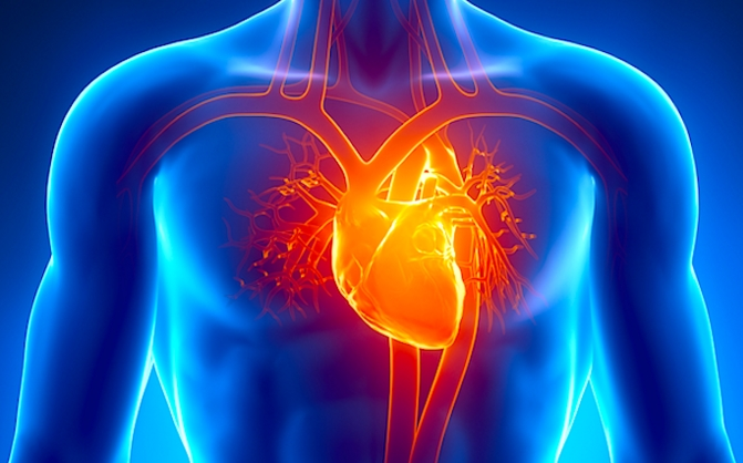 Periksa Kesehatan Jantung Secara Online