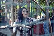 Selly-Manan akan Bangun Kebun Binatang di Kota Mataram