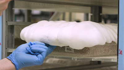 Mushroom replace styrofoam packaging
