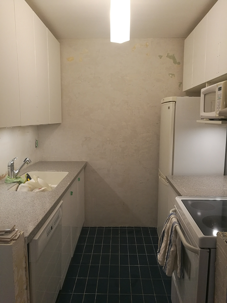 Kitchen with plastered walls