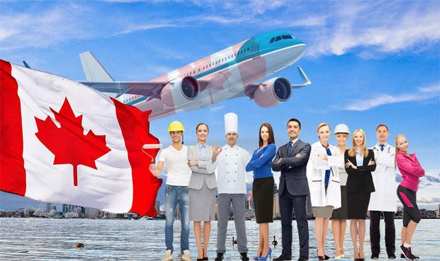 هل يمكن طلب يد عاملة في كندا بعد انتهاء كورونا ؟