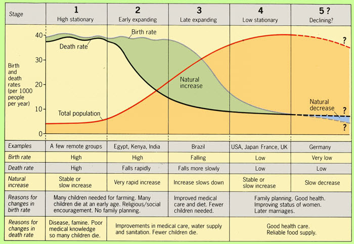 The Demographic Transition Model and its 5 stages