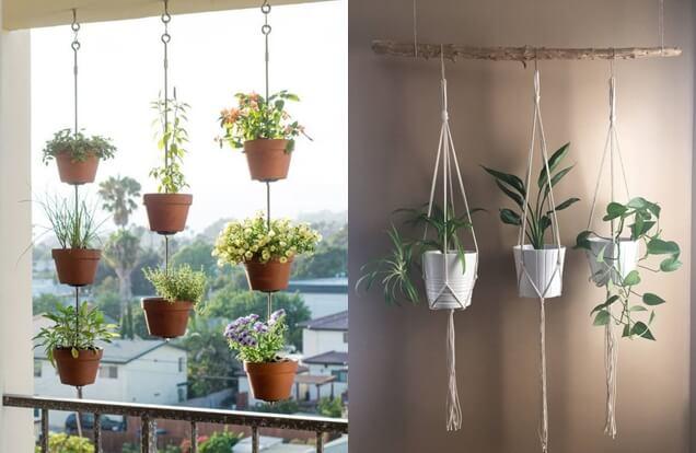 Dicas práticas e simples que vão deixar seu Jardim moderno e bonito