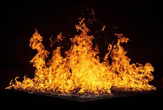 Australia fires as More than 200 homes burn down on  the coast
