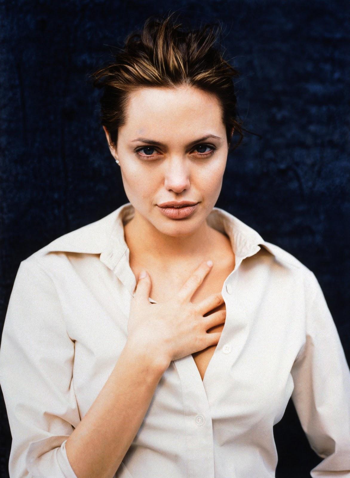 Angelina Jolie Look Using All Drugstore Makeup: Angelina Jolie Summary