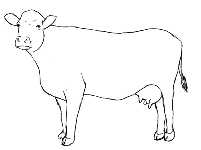 cow clipart simple - photo #35