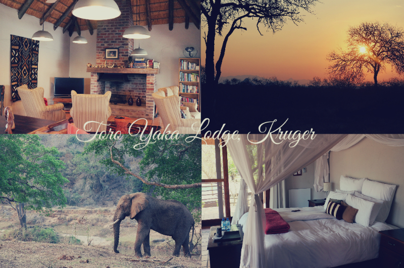 #PillowTalk: A review of Toro Yaka Lodge, Kruger