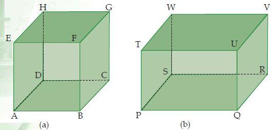 (a) Kubus dan (b) Balok