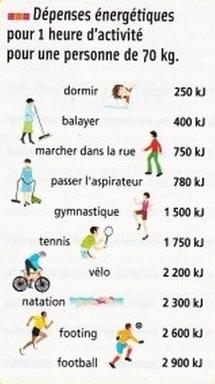 Activité physique, les effets sur la santé