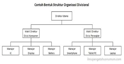 pengertian dan macam macam struktur organisasi menurut ahli Struktur Organisasi Fungsional struktur organisasi lini