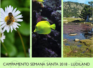 http://www.ludiland.eu/noticias/522/camento-semana-santa-2018