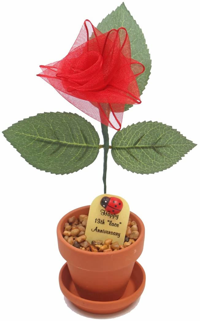lace rose with pot