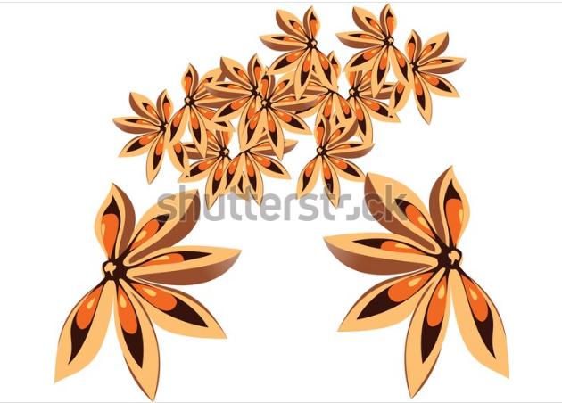illustration flowers