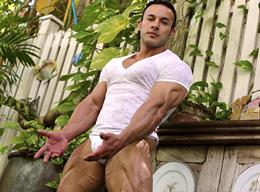 Male Stud Anton Buttone