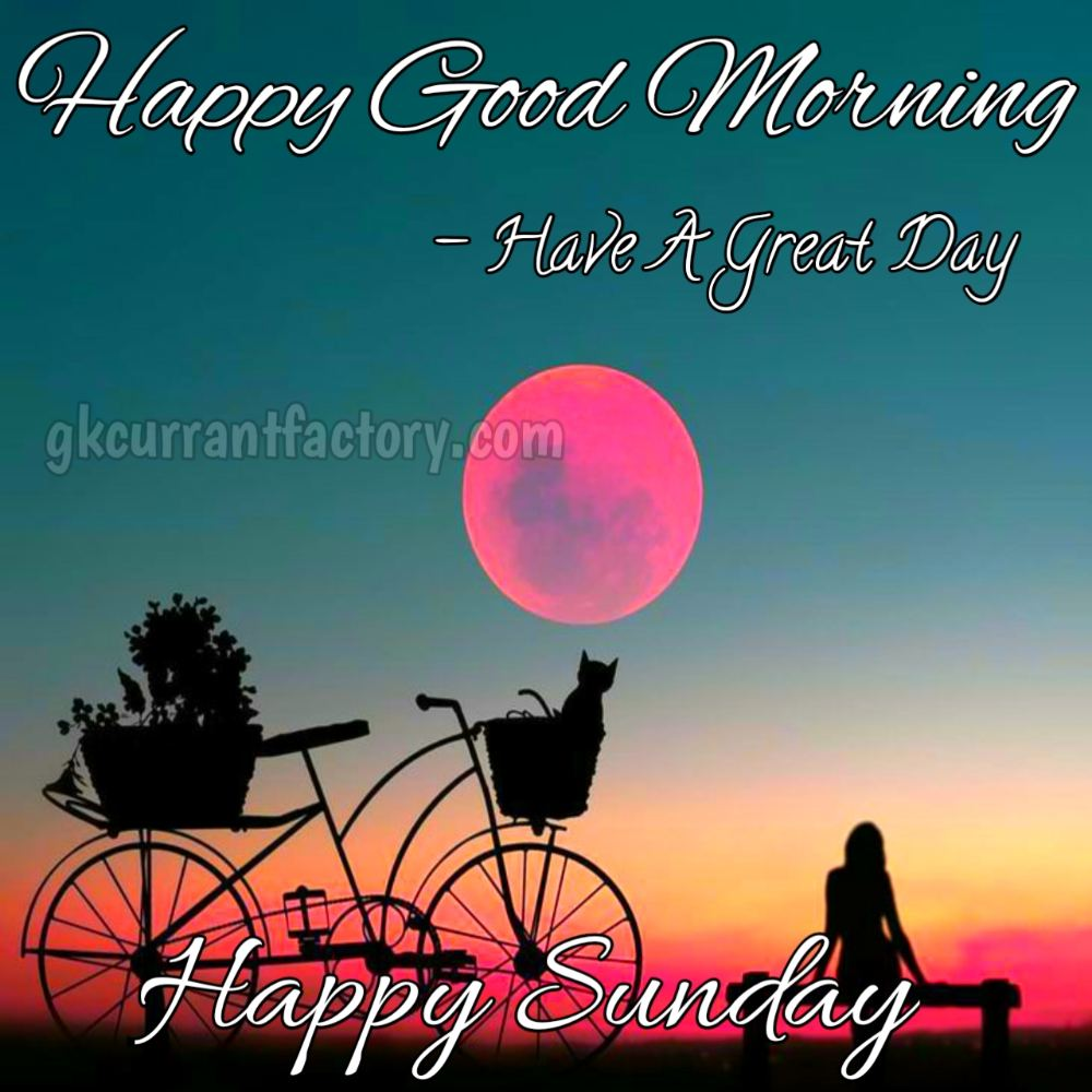 447 Best Happy Sunday Good Morning Images 2021 Hd