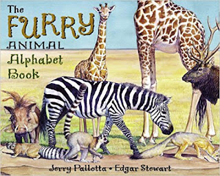 feel the furry animal alphabet book