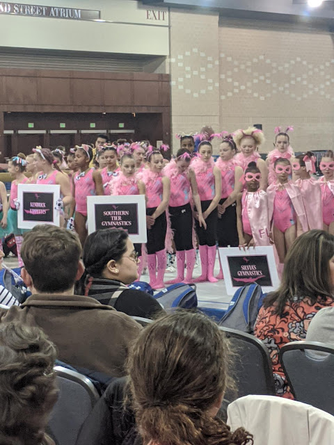 Pink Invitational 2020 --How Did I Get Here? My Amazing Genealogy Journey