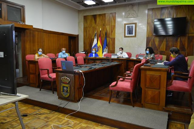 Mariano H. Zapata comparte con el Consejo Social de La Palma las iniciativas del Cabildo durante la crisis de la COVID-19